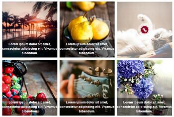 WordPress Gallery - Captions+Icons - Ultimate WordPress