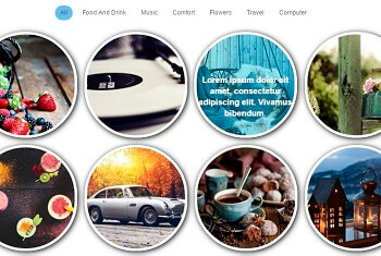 WordPress Gallery - Categories