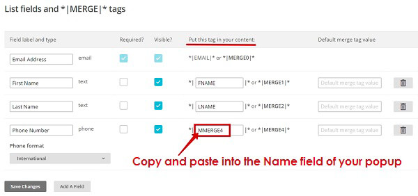 MailChimp add fields in WordPress Popup plugin