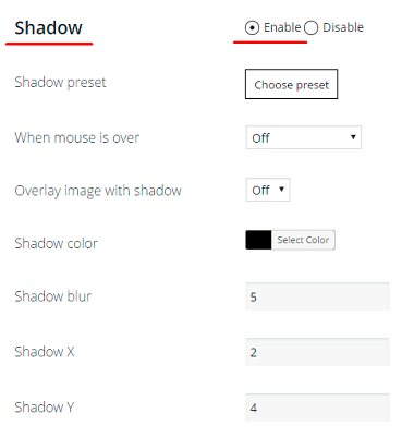 WordPress Gallery Shadow enable