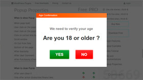 Age Verification or Restriction Popup
