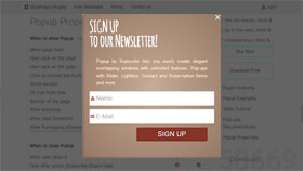 Subsription Popup WordPress