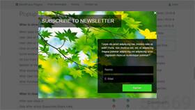 WordPess Popup Subscription