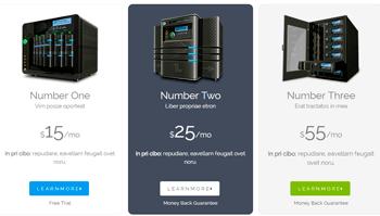 Server Hosting Price Table