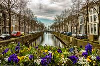 netherlands_travel