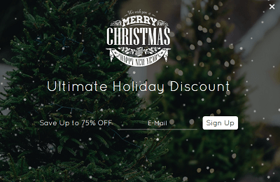 Popup - Holiday Discount