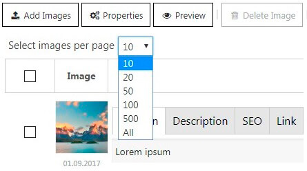 Image pagination option
