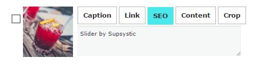 Supsystic Slider Media SEO