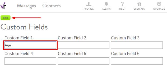 Add Custom field name