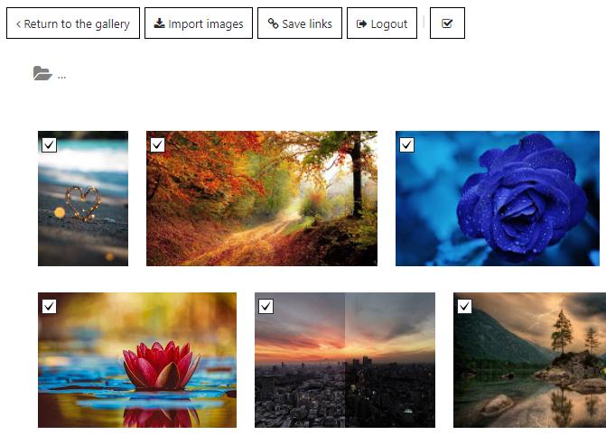 Google Drive folder in WordPRess Photo Gallery plugin