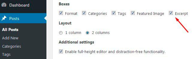 Newsletter plugin Excerpt option