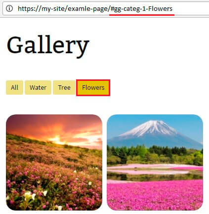 Gallery with code of category