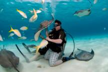 Nice Underwater Pets
