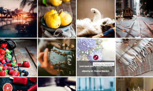 WordPress Gallery - Captions+Icons