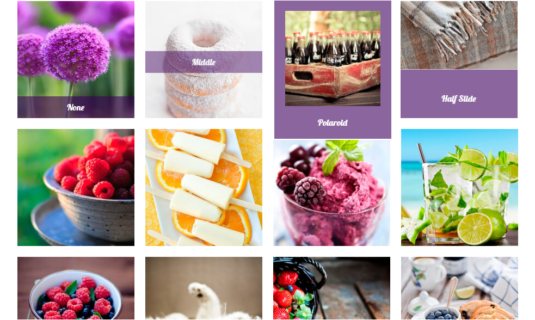 WordPress Gallery - Personal Caption Effects