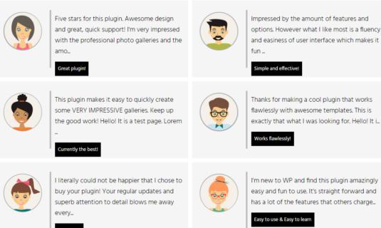 WordPress Gallery - Post Feed Description