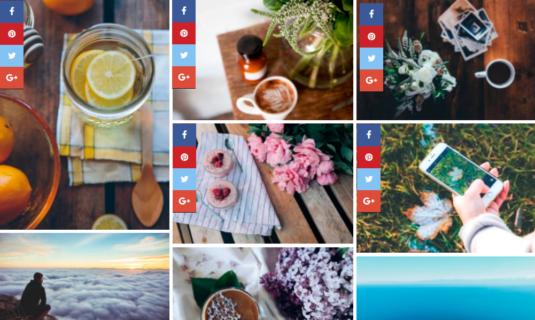 WordPress Gallery - Social Sharing